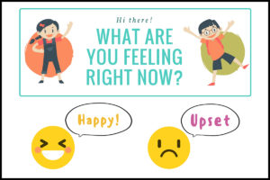 Importance of Emotion Rating