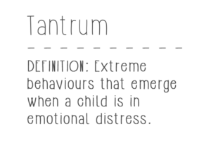 Definition of Tantrum